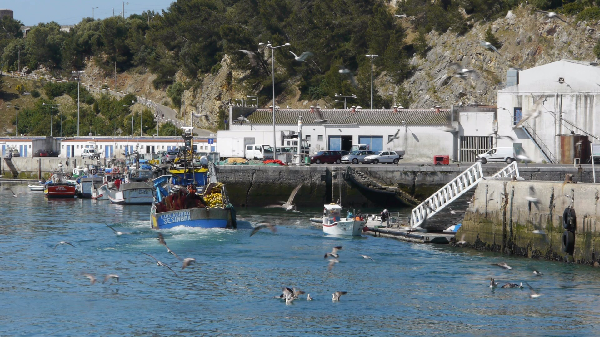 Portugal: Sardines and the Sea